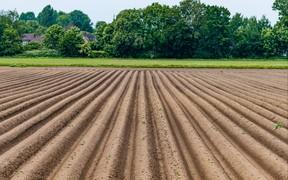 Нарушения земельного законодательства привели к 1,5 млн грн убытков