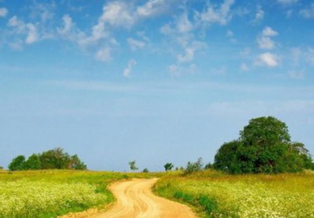 Новая денежная оценка земли во Львове отложена на год