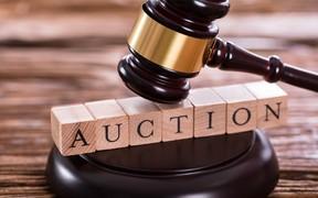 Нужны ли в Украине автомобильные аукционы? Результаты опроса
