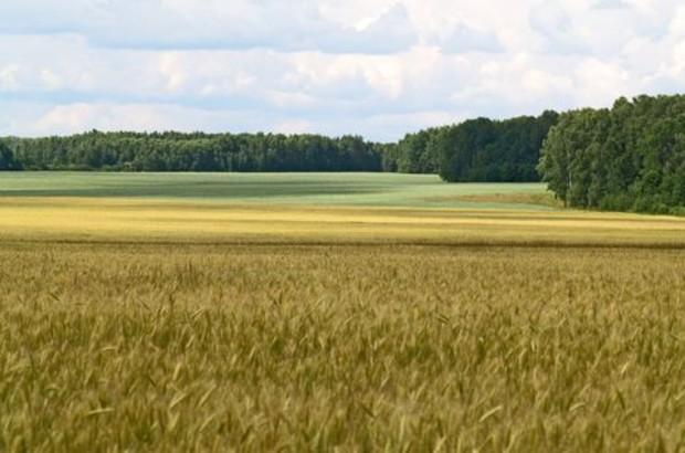 Оборот сельхозземель будет под контролем