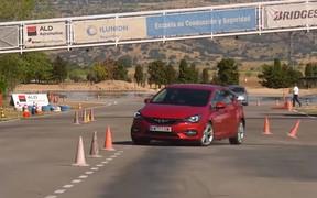 Opel Astra пошел на лося. Как справился? ВИДЕО