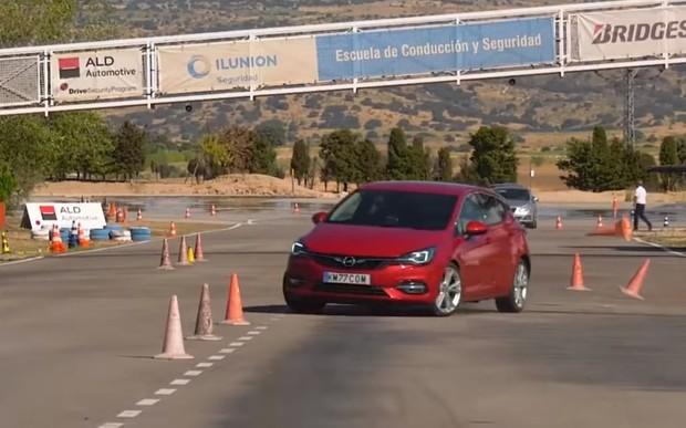Opel Astra пішов на лося. Як впорався? ВІДЕО
