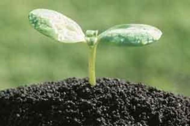 Порошенко: создать земельный кадастр мешают искусственные препятствия