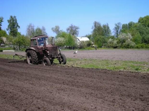 Правительство спросит мнение крестьян по продаже сельхозземель