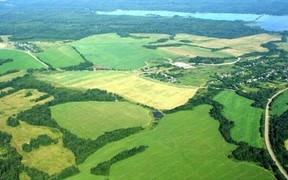 Президент требует остановить разворовывание земель в Украине