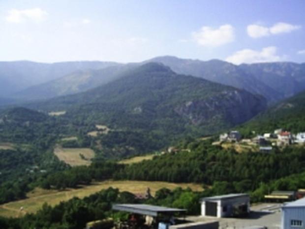 Прокуратура Крыма требует вернуть землю «Массандре»