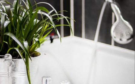 Растения в ванной комнате: лучшие идеи