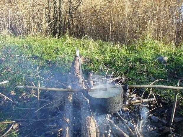 Разрешено отчуждать лесные участки под объекты для ЕВРО-2012