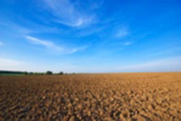Рынок земли: чиновники ищут крайнего