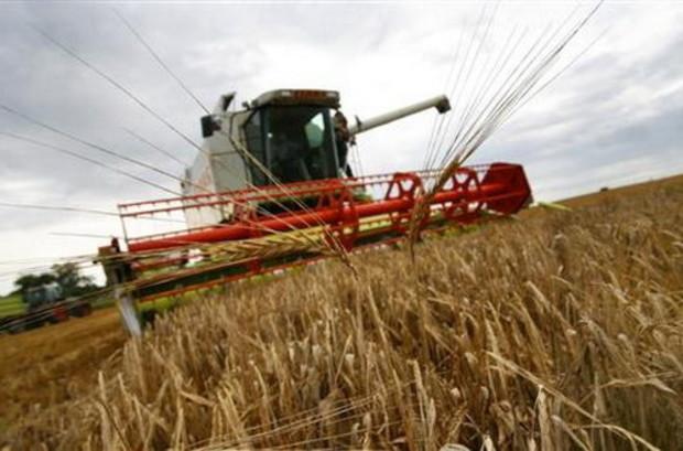 Сельскохозяйственная земля только для граждан Украины