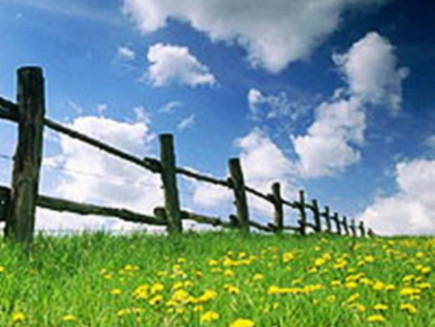 Селянам Украины будут продавать землю в кредит