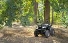 Shineray ATV 1 поколение Квадроцикл