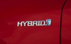 Спрос на гибридные авто в Украине растет. Стоит ли пригонять больше?