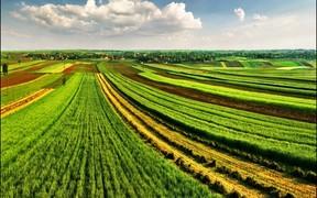 Стали известны принципы деятельности рынка земли