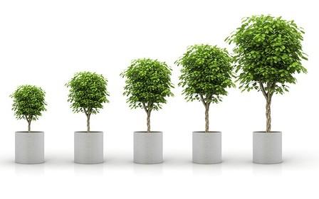 Стратегія Mitsubishi Motors щодо захисту довкілля