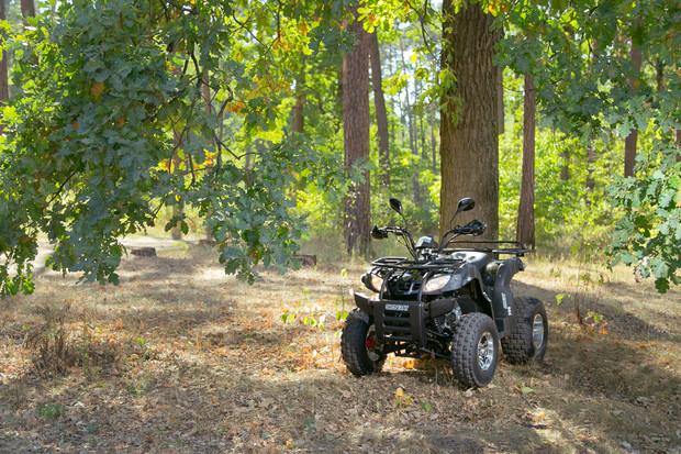 Тест-драйв квадроцикла Shineray ATV 200cc Viktory