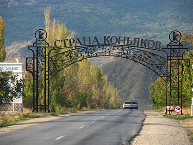 У Феодосийского винного завода отобрали 4 тыс га
