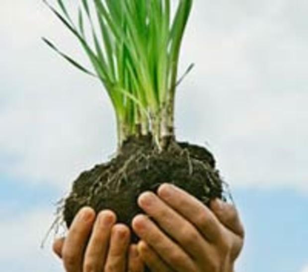 В 2010 году земли было продано на 1,5 млрд грн