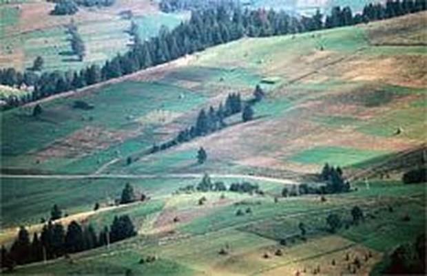 В 2013 году данные о земельных участках предоставят в он-лайн режиме