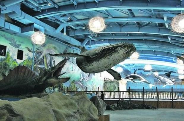 В Киеве открылся новый аквапарк