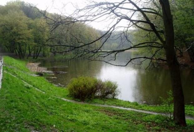 В Киеве расширят «Голосеевский» парк на 1,9 тыс. га