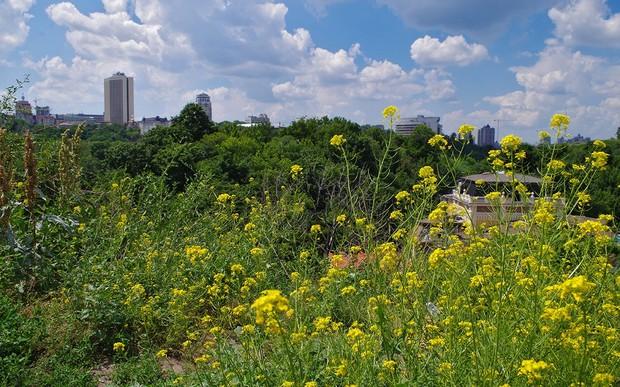 В Киеве вводят новые ограничения строительства