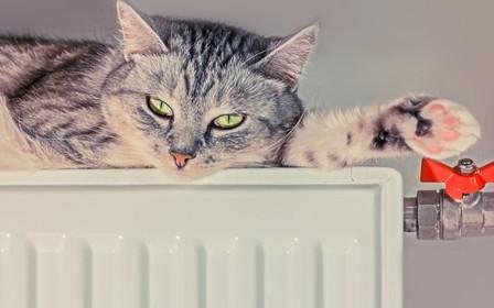 В Виннице уже более 700 домов с отоплением
