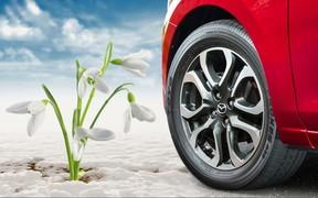 Весняний сервіс від Mazda «ВіДі-Скай»
