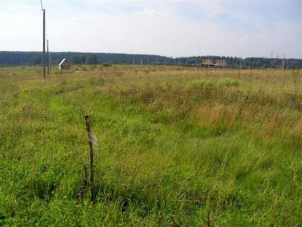 Во Львове землю под индивидуальное строительство будут продавать на аукционах