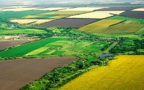 Замминистра экономики: Законопроект о рынке земли будет готов до 1 октября
