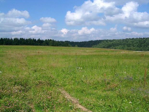 Земельные аукционы в Харькове проводиться не будут