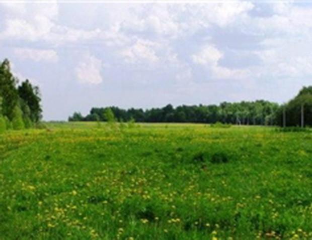 Земля в регионах Украины дорожает