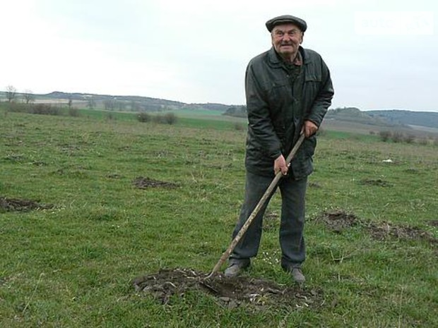 Аренда земли: крестьяне всегда в проиграше