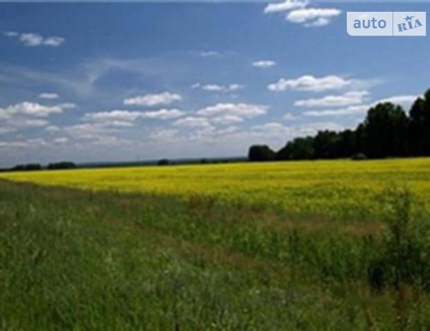 Киев собирается продавать землю иностранцам
