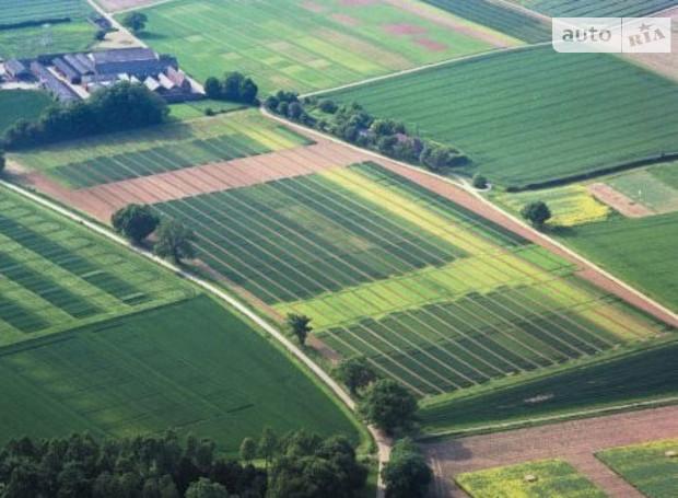 Почти 1,5 тыс наделов продадут на земельных аукционах