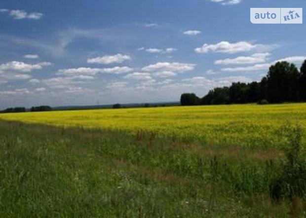 У Януковича хотят отменить мораторий на продажу земель