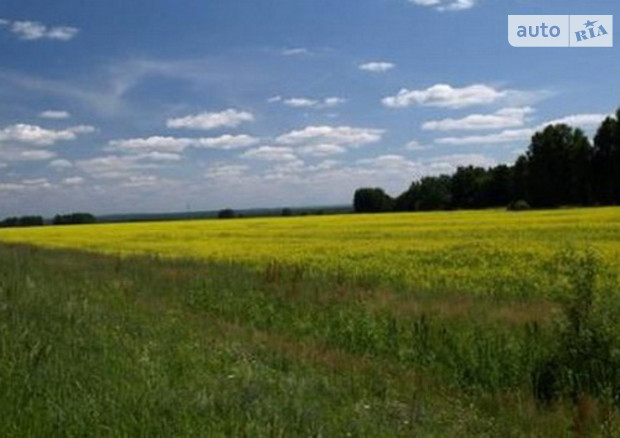 В Украине хотят создать Фонд земель государственной собственности