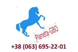 СТО Planeta-GBO